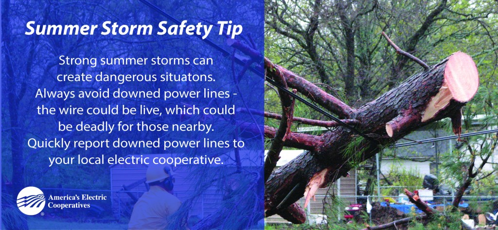 Downed Lines Safety
